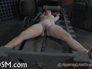 Submitting to stud's demands